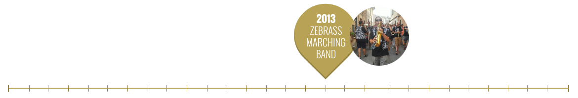 2013 zebrass marching band